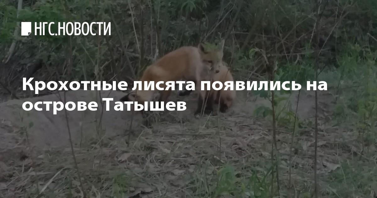 image Знакомства красноярск красноярский край