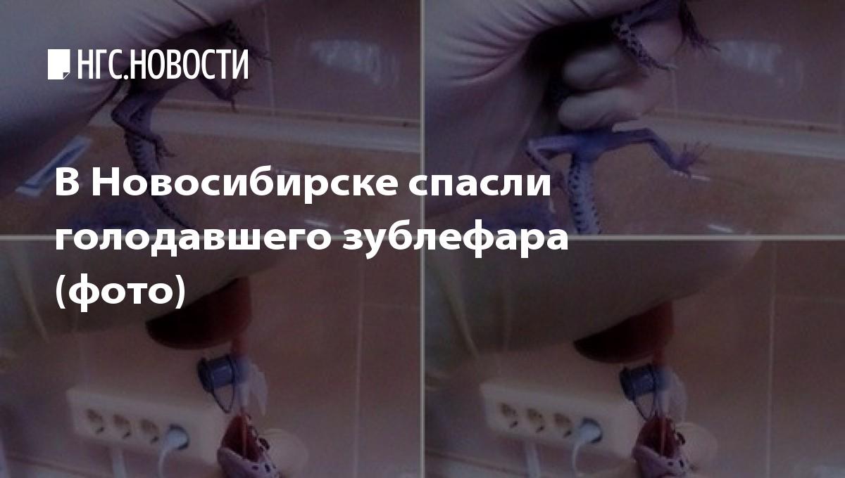 врач диетолог омск